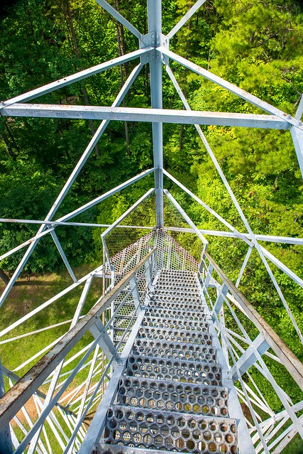 Hoosier National Forest - Hickory Ridge Lookout Tower - July 27, 2018