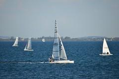 800_4904 (Lox Pix) Tags: queensland qld australia catamaran trimaran hyc humpybongyachtclub winterbash loxpix foilingcatamaran foiling bramblebay sailing race regatta woodypoint boat