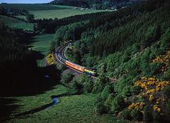 Luxembourg international (trainspotter64) Tags: eisenbahn zug train treno tren trein railroad railway spoorwegen vlak bahn luxembourg luxemburg ardennen ardennes ösling nordstrecke nordstreck hle55 sncb nmbs