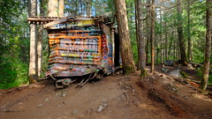 Crashed wagon abandoned in what is now a forest (benfelt) Tags: train whistler rockies canada