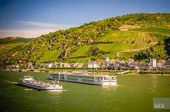Theodora cargo ship and Viking Vidar river cruise ship (hjakse) Tags: tyskland deutschland germany rhine rhen rheine flod river flut vikingvidar rhein kaub pfalzgrafenstein rheinlandpfalz brd