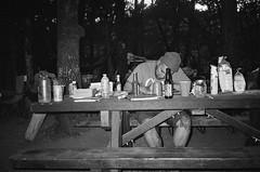 Rave (kawehna) Tags: camping family lakepillsbury norcal clearlake mendocino 35mm ilfordsfx 400iso blackandwhite c41process kodakexplorer pointandshoot bayarea analog bnw filmphotography