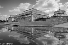 Kew Gardens  -16.jpg (Colin Dorey) Tags: temperatehouse glasshouse greenhouse reflection sky puddle kew gardens park botanicgardens richmond surrey london uk summer 2018 architecture structure trees bw monochrome blackandwhite blackwhite