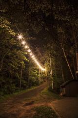 Lights up the pathway (Mercenaryhawk) Tags: lake 26 wisconsin danbury webb lights string night late dark long exposure lit canon eos 5ds 5dsr 14mm rokinon sp trees summer