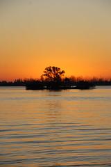 SUNRISE (R. D. SMITH) Tags: sunrise dawn river sun canonrebelxsi indianriver florida tree water morning