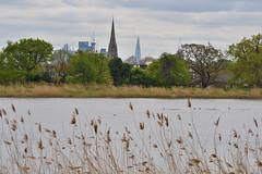 (113/365) Monday April 23rd (philk_56) Tags: woodberrywetlandscentre lake east reservoir hackney london wetlands water nature reserve shard reeds