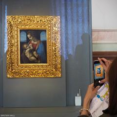 Madonna Litta (peterphotographic) Tags: p3200191edwm olympus em5mk2 microfourthirds ©peterhall madonnalitta leonardodavinci госуда́рственныйэрмита́ж statehermitagemuseum stpetersburg saintpetersburg russia санктпетербу́рг росси́я art artgallery painting madonna mary jesus museum mobile mobilephone