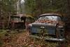- L L M - (mariburg) Tags: rotten marode alt old rostig rustycars canonef2470mmf28liiusm canoneos6d auto