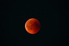 The Bloody Moon (bobban25) Tags: lunar moon blood bloody sturefors linköping östergötland sverige sweden scandinavia canoneos80d canon80d 80d canon sigma150600 sigma150600563dgoshsmsports