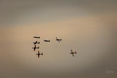 Aerobatics - Smoke Squadron - dreams 6 (Enio Godoy - www.picturecumlux.com.br) Tags: niksoftware viveza212133521346573 nikon dreams airplane nikond300s fab sunset acrobats baurusp aerobatics smokesquadron sky clouds