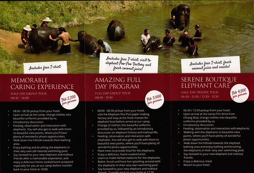Elephant Rescue Park Chiang Mai Thailand 2