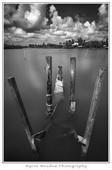 Florida 2018; #2 (Michael Besant) Tags: sunshinestate florida byrnemeadowphotography michaelbesant monochrome bw sanibelisland 2