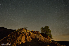 Caprock Canyon Starry Night_MG_1567_1568_Merge (Alfred J. Lockwood Photography) Tags: alfredjlockwood nature landscape nightscape nightsky stars juniper focusstack caprockcanyonstatepark sandstone redrock spring texas lowlevellighting lightpainting