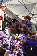 DSC_6393 (photographer695) Tags: columbia road sunday flower market london