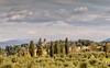 Dreaming of Tuscany (NettaT) Tags: tuscany florence hills country trees sky clouds landscape nature