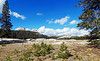 Regeneration, Tuolumne Meadows, Yosemite 2017 (inkknife_2000 (9 million views)) Tags: easternsierranevadas yosemitenationalpark california usa landscapes mountains dgrahamphoto tuolumnemeadows panorama granite forest skyandclouds rocks boulders newgrowth seedlings