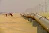 ahmadi pipe dream (sculptorli) Tags: ahmadi kuwait desert pipeline camel الكويت 科威特 кувейт الأحمدي ахмади 沙漠 pipedream صحراء пустыня desierto wüste conduttura tubería 油管 oleodotto нефтепровод 骆驼 alahmadi ahmadidesert