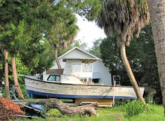 Wheelbarrow, boat and house 191 (Tangled Bank) Tags: visiting cedar key floridaon gulf coast rural south small town dixie southern america american americana roadtrip road trip wheelbarrow boatandhouse191 old classic heritage vintage