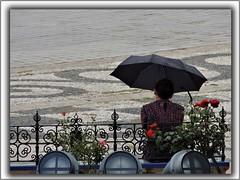 Anhelo (Aitné) Tags: gente vida color flores pensamientos paraguas lluvia suelo plaza