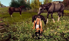 The Paradise 4 (Leelah Wolfheart) Tags: devinseye smesh maitreya mesh millarasmusen lelutka queenofink jumo caejewelery izzies agrace theface xtraordinary zoz