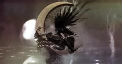 Le beau et la bête (Felice Nightfire) Tags: anc aii eve sys fantasy lovecraft