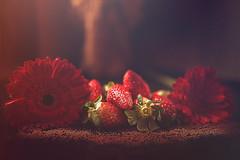 35 VIV_7784r (Viv Godinho) Tags: bokeh stilllife pastel light flowers flores food foodphotography macro macrophotography