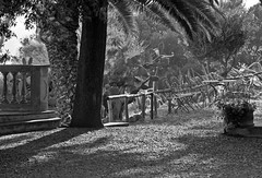 EVENING MOOD (LitterART) Tags: villabengodi toskana toscana fontenblanda fujifilm tuscany maremma italy italien