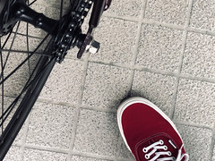 IMG_2933 (uki_cafe) Tags: japan hokkaido iphone iphonex shoes sneaker vans authentic bicycle fixedgear fixedbike trackbike fuji feather
