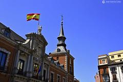 20180718 Madrid-Austrias (168) R01 (Nikobo3) Tags: europe europa españa spain madrid austrias urban street arquitectura architecture travel viajes nikon nikond800 d800 sigma3514art nikobo joségarcíacobo