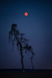 Bloodmoon & Mars