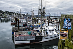 Dockside (TCeMedia/Telecide) Tags: boat trawler bay sea yaquina oregon newport clouds sky ship