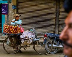 Man selling apples on the street in Kathmandu, Nepal (BryonLippincott) Tags: nepal thamel asia asian centralasia kathmandu nepali men two vendor fruit selling business street streetscene apples basket bicycle waiting businessman entrepreneur bored armsfolded
