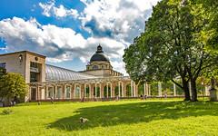 dog day afternoon (werner boehm *) Tags: wernerboehm bayerischestaatskanzlei münchen architektur baum schatten finanzgarten