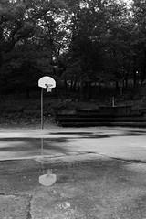 Edit -1-3 (Dane Van) Tags: canadacreekranch atlanta michigan atlantamichigan basketball minimalism blackandwhite fujifilm x100f reflection