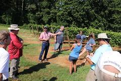 IMG_9121 (UGA CAES/Extension) Tags: vineyard wine winery stonepilevineyard viticulture viticultureteam northgeorgia winecountry ugacooperativeextension uga extension grapes ugaextension cainhickey