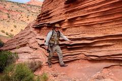 Rock fins above Secret Pocket (Chief Bwana) Tags: paria az arizona pariaplateau navajosandstone vermilioncliffs rockfins flakerock concretions secretpocket psa104 chiefbwana