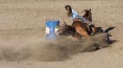Barrel Racing (allentimothy1947) Tags: califonia food santaroaa sonomacountyfair barrelracing carnival games horses midway people racing rides