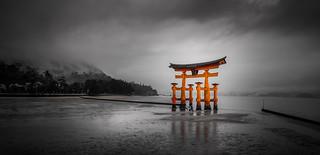 Torri Gate @ Miyajima