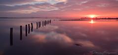 Reflection at its best (doloreshooijschuur) Tags: sunset zonsondergang nd8 reflection reflectie pink roze sun zon water haringvliet nederland netherlands zuidholland hellevoetsluis voorneputten paaltjes helius pole longexposure canon canoneos77d canon77d canonnl landscape landschap clouds wolken sky lucht