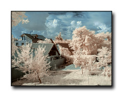 Timisoara (infrared) (nicucricu) Tags: dualiso canon 60d 80d timisoara s5 color longexposure 400d exposure long panorama eos holiday outdoors party photo tamron speedlite s3 430ex bells clousup love macro snow black outline line flashlight design outdoor nicucricu nicu cricu nature sunset water red beach portrait night flowers blue white tree green art light sun clouds landscape street summer city trees yellow lake people house car bw old new fun digital selfie weather blur infrared ir