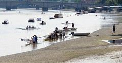 """Wooden Ships""....Carbon and Aluminium (standhisround) Tags: putney london england uk river riverthames thames lowtide rowing water boats oarsmen females males rowingclubs training trainers scullers equipment putneybridge bridge crew mixed supervision sun glare"