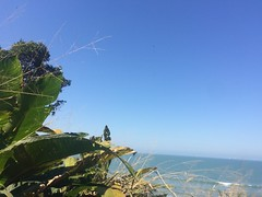 Santos/ Praia Grande 2018 (verrilo) Tags: santos praia grande são vicente do itaquitanduva turismo jessica verrilo viagens momentos ticiane marangoni