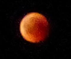 Lunar eclipse (MargrietPurmerend) Tags: greece lesvos molyvos moon lunareclipse bloodmoon