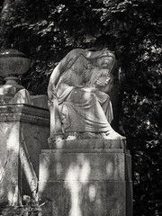 20180518-0121-Edit-Edit (www.cjo.info) Tags: 19thcentury 19thcenturyneogothic bw england europe europeanunion highgate highgatecemetery highgatecemeterywest london m43 magnificent7 magnificentseven magnificentsevengardencemeteries microfourthirds nikcollection olympus olympuspenfgzuikoautos40mmf14 olympuspenf penfmount silverefexpro silverefexpro2 unitedkingdom victoriangothic westerneurope architecture art blackwhite blackandwhite carving cemetery classiclens death decay digital flora girl gothic gothicrevival gravegraveyard legacylens manualfocus monochrome overgrown people plant sculpture sleeping statue stone stonework tree victorian woman wood wooded