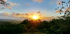 Sunset sur Auckland depuis East Tamaki Heights (Christian Chene Tahiti) Tags: canon 6d easttamakiheights pointviewreserve dannemora ciel sky tree nuage cloud pelouse aucklandnznew zealandtravelvoyageflorecouleurcolournatureparkingbotanycentre commercialsunsetcoucher de soleil arbre bleu orange jaune nuit hiver winter froid crépuscule sun