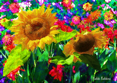 Sunflower Garden (brillianthues) Tags: sunflowers flowers floral nature garden colorful collage photography photmanuplation photoshop