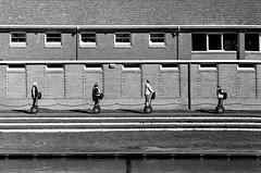 An Adelaide Segway.. (backwaterbeat) Tags: blackandwhite 35mmfilm analog analogue segway adelaide pushedfilm trix kodak leicam3 m3 leica