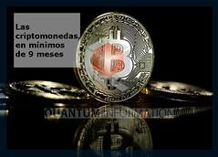 GLOBAL-BITCOIN (Quantum Investment) Tags: bitcoin bitfinex criptodivisas criptomercado criptomonedas dinero economia eeuu estadosunidos ethereum litecoin mercados news noticias quantum quantuminvestment quantuminvestments sec