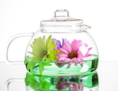 Flower Tea (Karen_Chappell) Tags: flowers flower floral tea teapot glass white pink green pastel stilllife