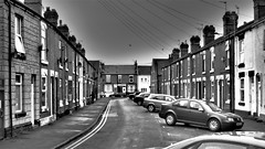 Harrington Street, Doncaster. (ManOfYorkshire) Tags: telephone wires satellite dish dishes road street cars parking terrace terraced houses housing old brick doncaster southyorkshire yorkshire england gb uk diagonal bays stonecladding coronationst harrington harringtonst harringtonstreet bw blackwhite olympus pen8 slr vehicles